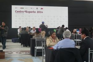 exporta-2
