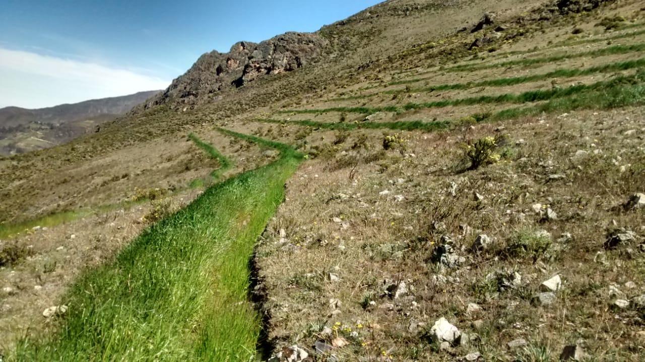Minagri Con Zanjas De Infiltración Y Terrazas De Cultivos